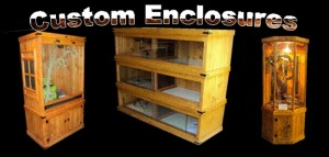 custom reptile enclosures