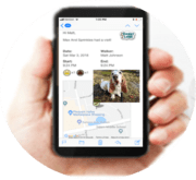 digital text updates about your dogs walk