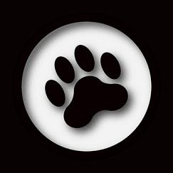 dog paw sitting
