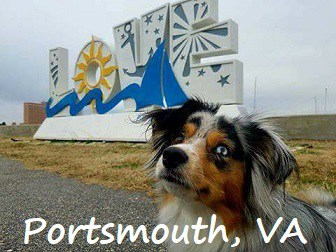 dog walking around love sign in Portsmouth, Virginia